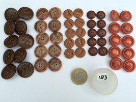 set 183  bruin